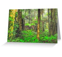 RainForrest Dreaming #2 - Mount Wilson NSW - The HDR Experience Greeting Card