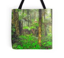 RainForrest Dreaming #2 - Mount Wilson NSW - The HDR Experience Tote Bag