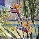 Strelitzia, Williamstown Botanic Gardens by Virginia  Coghill