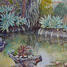 The pond, Williamstown Botanic Gardens by Virginia  Coghill