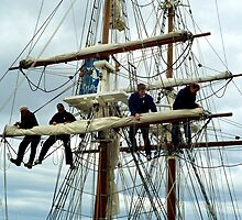 Rigging the mainsail-Hobart by mypic