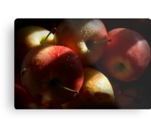 Some Apples for Luther Metal Print