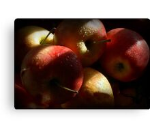 Some Apples for Luther Canvas Print