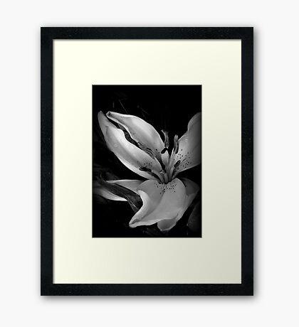 Dancing In The Dark Framed Print
