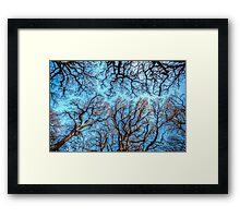 Reaching the Sky Framed Print