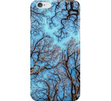 Reaching the Sky iPhone Case/Skin