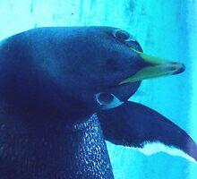 Underwater Penguin Phone Case by thealmightylion