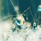 Sea Blue & Sand Cactus Drop by Sharon Johnstone