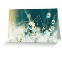 Sea Blue & Sand Cactus Drop Greeting Card