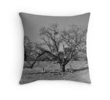 Sprawling oak tree- b&w Throw Pillow