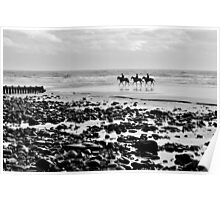 Horse on Amroth Beach  Poster