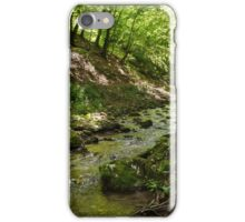 Mountain river flowing through valley iPhone Case/Skin