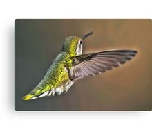 Mighty Wing Canvas Print