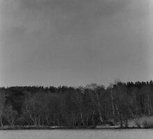 Lake I by nekooooxxw
