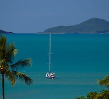 Postcards from Paradise - Airlie Beach QLD by Mark Fitzpatrick