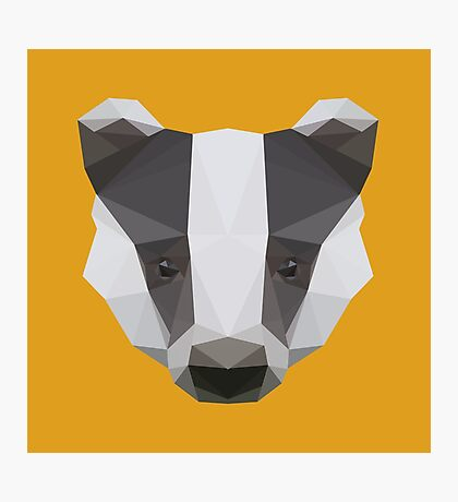 Badger Love Photographic Print