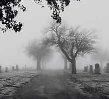 Cemetary  by AmbivalentMe