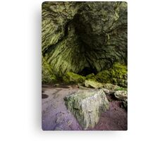 Inside of a cave Canvas Print