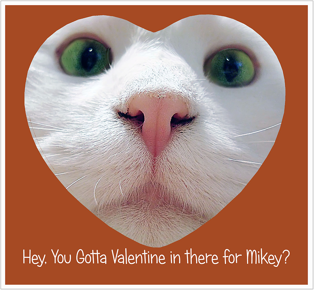 Hey, you gotta Valentine in there for Mikey? by ibjennyjenny