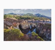 Pelican Point, Point Lobos Natural Reserve One Piece - Long Sleeve