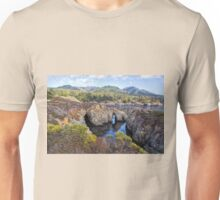 Pelican Point, Point Lobos Natural Reserve Unisex T-Shirt