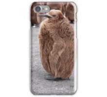"King Penguin chick ~ ""Mirror Mirror on the wall, who's the........"" iPhone Case/Skin"