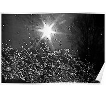 Sun & Ice Poster