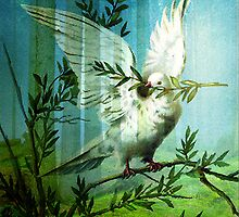 DOVE OF PEACE by Tammera