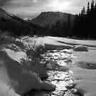 To Bow Lake by zumi