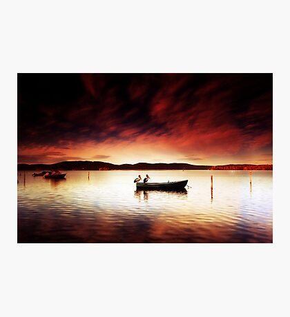 Pelicans Boat Photographic Print