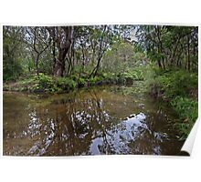 Somersby River Reflections Poster
