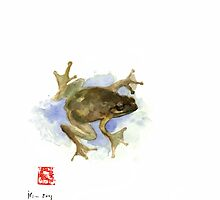 Green Yellow Blue Frog Lake River Animal World Water Colors jewel collection by Johana Szmerdt