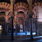 2013  Cordoba Mezquita by Sue Ballyn