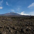 Etna Did This - the Lava Fields and the Volcano  by Georgia Mizuleva