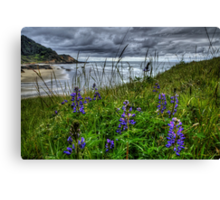 Just To See The Sea Canvas Print