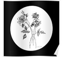 Graphite Roses with Black Background Poster