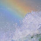 Splash the Rainbow by Jill Vadala