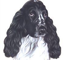 Spaniel by HandsonHart