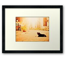 Waiting for the Master Framed Print