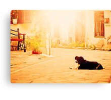 Waiting for the Master Canvas Print