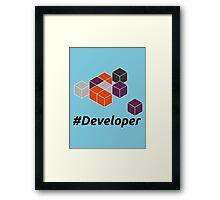 Developer Framed Print