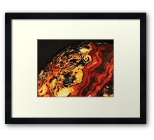 Young Planet (Crazy Lace Agate) Framed Print