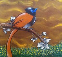 African Paradise Flycatcher  by Sarah O'Neal
