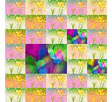 Happy Spring Tulips Flower Collage Photographic Print