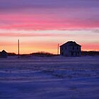 Winter Sunrise by Steph Peesker