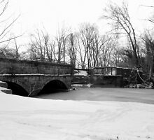 Snow Bridge by Valeria Lee