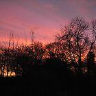 Winter sunset by lezvee