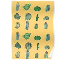 Comical Cacti Poster