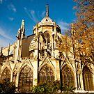The Notre Dame, Paris.  by Deanne Dwight