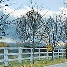 Fenced In the Fall by AnnDixon